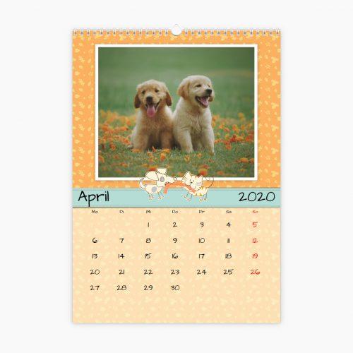 Fotokalender - wie Hund und Katze