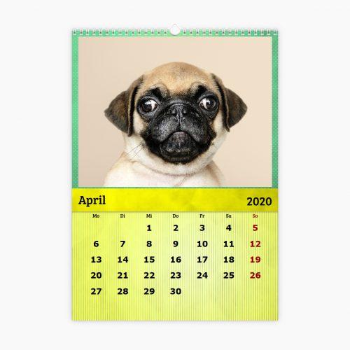 Fotokalender - Farbenfroh